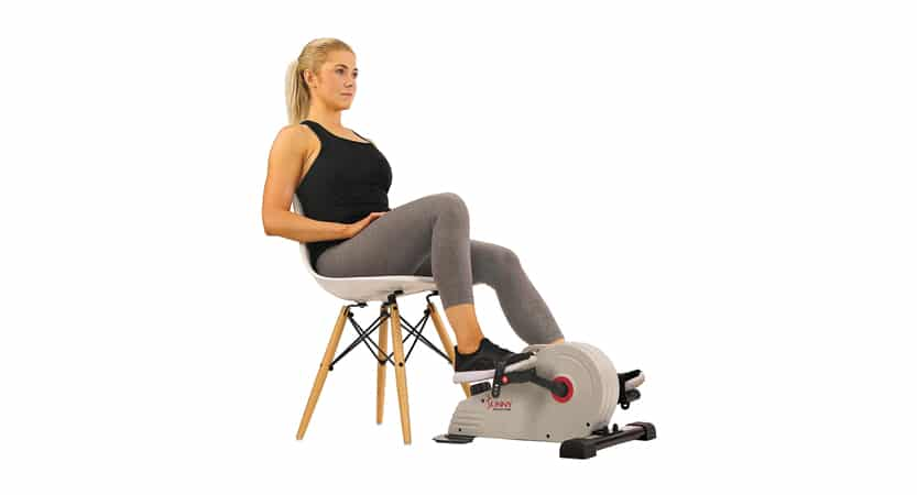 Sunny Health & Fitness Magnetic Mini Exercise Bike SF-B0891
